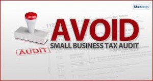 tax audit small business
